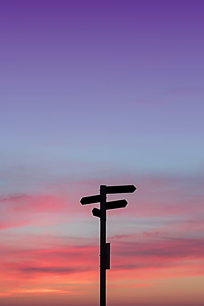 Signpost showing with therapy you can choose your direction in life